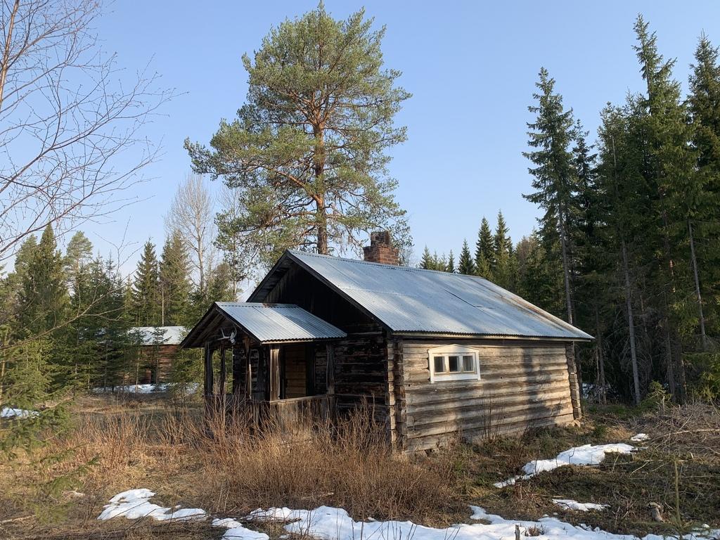 Skogsfastighet Till Salu Skogsbyragruppen Mer An Maklare